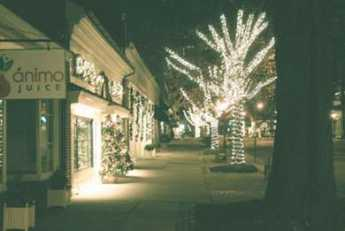 {Haddonfield Christmas Lights}